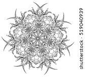 contoured luxury flowers in... | Shutterstock .eps vector #519040939