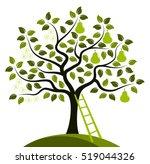 Vector Pear Tree In Two Season...