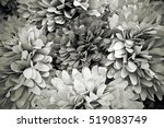 floral decorations made of... | Shutterstock . vector #519083749