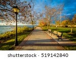 autumn color along the... | Shutterstock . vector #519142840