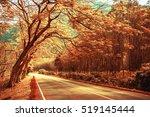 Beautiful Road In The Beautifu...