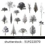 white leaf snow tree winter... | Shutterstock . vector #519222070
