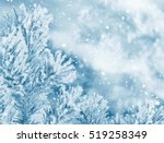 Winter Natural Background With...