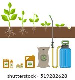 stage of growth of plant.... | Shutterstock .eps vector #519282628