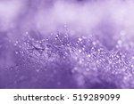 Abstract   Macro Droplet On Fu...