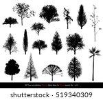 silhouette shadow black tree or ... | Shutterstock . vector #519340309