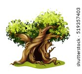 cartoon style oak illustration. ... | Shutterstock .eps vector #519357403