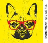 portrait of french bulldog with ... | Shutterstock .eps vector #519431716