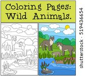 coloring pages  wild animals....   Shutterstock .eps vector #519436654