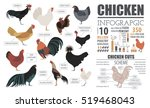 poultry farming infographic... | Shutterstock .eps vector #519468043