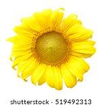 Stock photo flowers isolated on white background 519492313