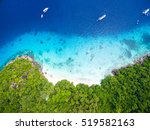 isolated beautiful tropical... | Shutterstock . vector #519582163