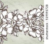 dog rose pattern. brier.... | Shutterstock .eps vector #519593728