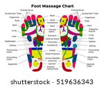 foot reflexology chart with... | Shutterstock .eps vector #519636343