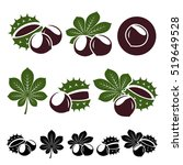 Chestnut Set. Vector