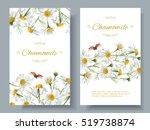 vector chamomile flower banners ... | Shutterstock .eps vector #519738874