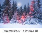 night in the ukrainian... | Shutterstock . vector #519806110