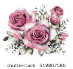 Stock photo watercolor flowers floral illustration in pastel colors pink rose branch of flowers isolated on 519807580