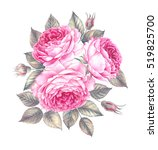 bouquet of rose. invitation... | Shutterstock . vector #519825700