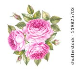 bouquet of rose. invitation... | Shutterstock . vector #519825703