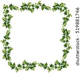 ivy vines   Shutterstock .eps vector #519881746