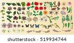 vector set flower with birds... | Shutterstock .eps vector #519934744