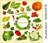 fresh vegetable poster with... | Shutterstock .eps vector #520010578