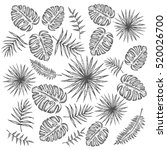 tropical seamless pattern with... | Shutterstock .eps vector #520026700