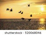 Beautiful Sunrise And Flying...