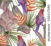 watercolor seamless tropical... | Shutterstock . vector #520117090