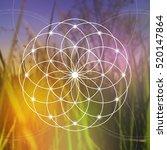flower of life   the... | Shutterstock .eps vector #520147864