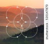 flower of life   the...   Shutterstock .eps vector #520147870