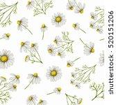 watercolor seamless pattern... | Shutterstock . vector #520151206