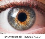 human eye close up | Shutterstock . vector #520187110