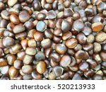 chestnuts as a background | Shutterstock . vector #520213933