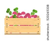 vector crate with fresh... | Shutterstock .eps vector #520265338