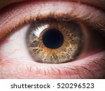 human eye close up | Shutterstock . vector #520296523