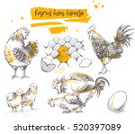 Set Of Farm Chicken Family....