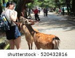 nara june 26 tourists enjoy the ... | Shutterstock . vector #520432816