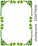 Withe Frame With Green Beech...
