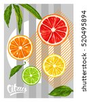 poster with citrus fruits... | Shutterstock .eps vector #520495894
