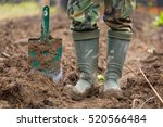 man digging with spade in... | Shutterstock . vector #520566484