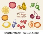 fruits vintage collection hand... | Shutterstock .eps vector #520616800