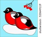birds bullfinches | Shutterstock .eps vector #520649119