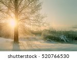 Winter Sunset Landscape With...