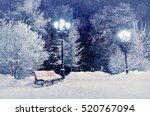 Winter Night Landscape Scene O...