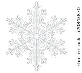 Big Crystal Snowflake In Gray...