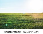 background photography of... | Shutterstock . vector #520844224