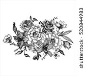 vintage vector floral...   Shutterstock .eps vector #520844983