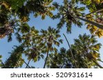 Forest Resources. The Forest I...